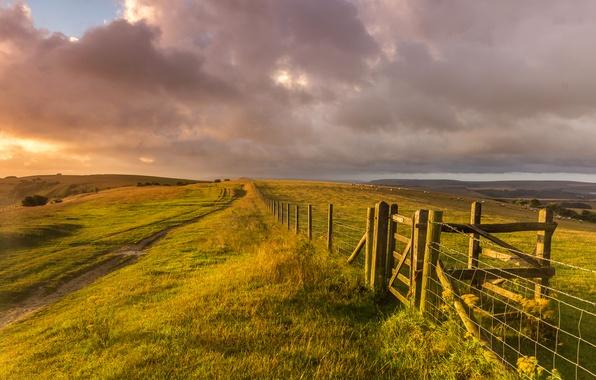 Картинка поле, трава, пейзаж, природа, холмы, забор, овцы, Англия, вечер, ограда, Великобритания, ферма, England, Great Britain, ...