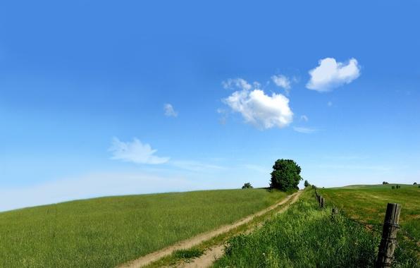 Картинка дорога, зелень, поле, небо, природа