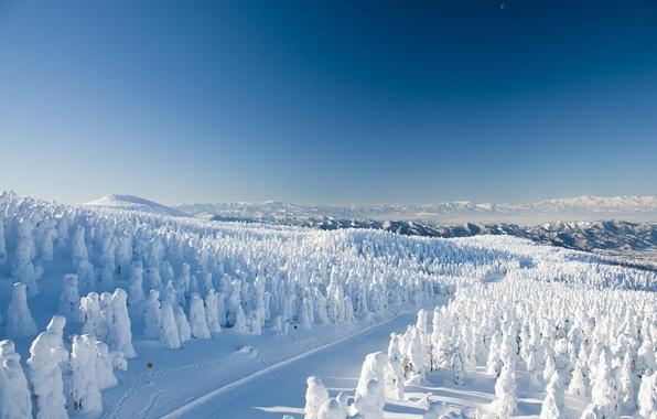 Картинка зима, дорога, лес, снег, деревья, горы, Япония, Japan, Yamagata, Ямагата, Yamagata Zao Onsen Ski Resort