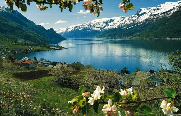 Картинка небо, трава, снег, цветы, горы, озеро, дом, весна