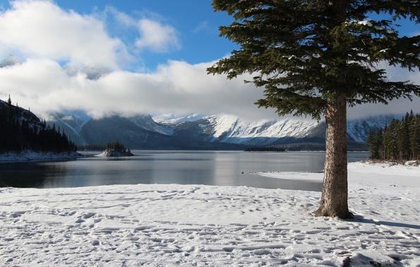 Картинка зима, небо, облака, снег, деревья, горы, озеро, остров