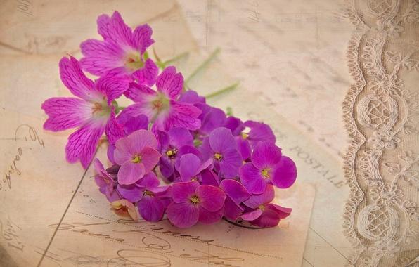Картинка цветы, винтаж, сиреневые, герань, письма, открытки