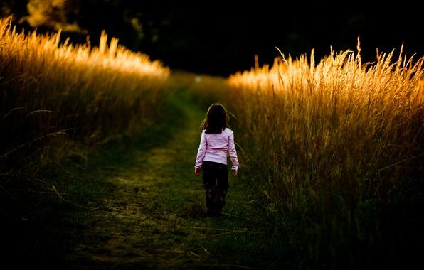 Картинка дорога, поле, трава, дети, путь, настроение, заросли, настроения, девочки, девочка, прогулка, малышка, ребёнок, детишки, малышки, …