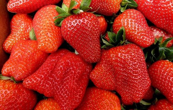 Картинка клубника, ягода, красная, спелая, сочная