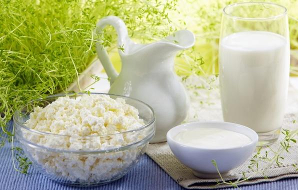 Обои картинки фото лето, творог, молоко, сметана, кувшин