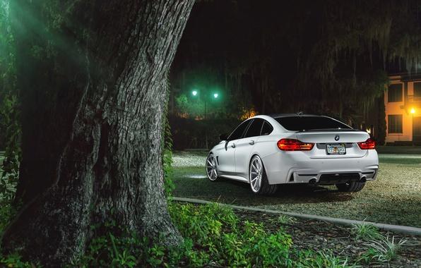 Картинка BMW, Car, Grass, Green, White, Series, Sport, Vossen, Wheels, Rear, VFS1