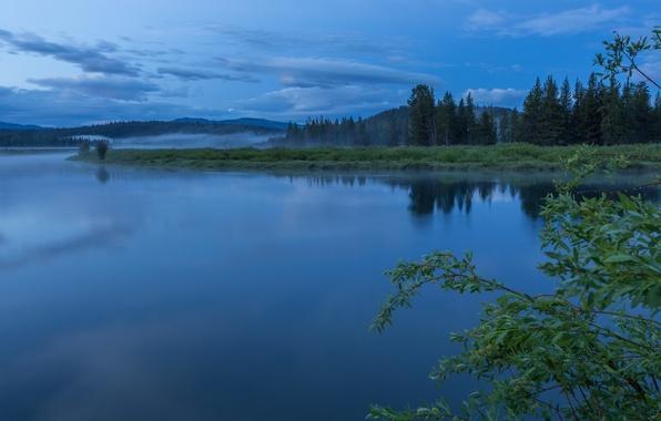 Картинка лес, небо, облака, деревья, туман, отражение, река, утро, США, национальный парк, Гранд-Титон, штат Вайоминг, Oxbow …
