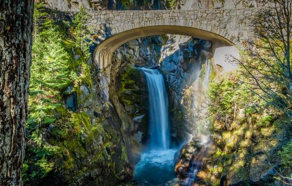Картинка деревья, мост, камни, водопад, поток, Вашингтон, США, кусты, Mount Rainier National Park, Christine Falls