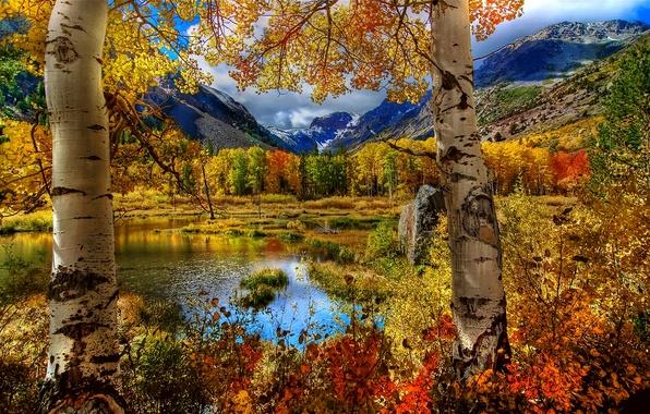 Картинка осень, небо, трава, листья, пейзаж, горы, природа, озеро, Деревья, облаках
