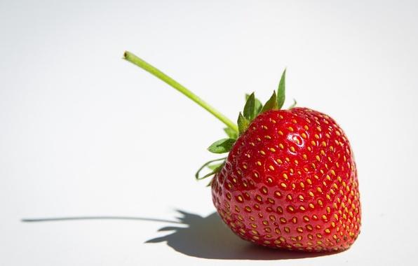 Картинка макро, клубника, ягода, белый фон