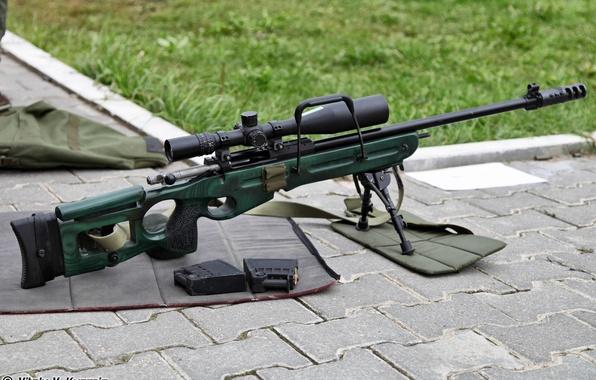 Картинка снайперская винтовка, обоймы, СВ-98, 7.62мм, SV-98, sniper rifle