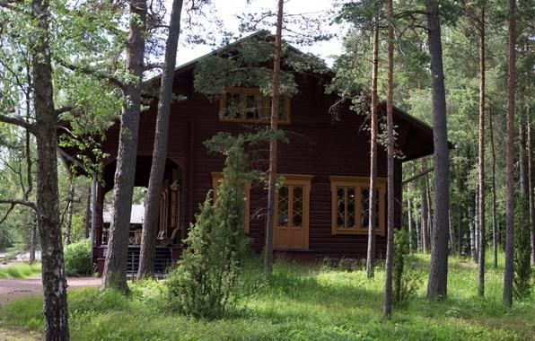 Картинка лес, трава, деревья, дом, музей, усадьба, Финляндия, Langinkoski, Cottage Alexander III