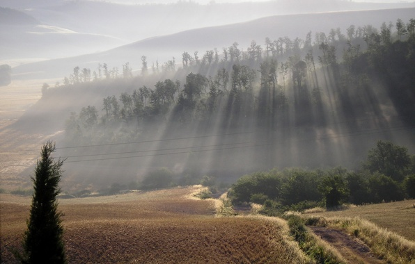 Картинка дорога, природа, туман, холмы, красота, утро