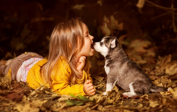 Картинка ребенок, собака, девочка, щенок, друзья, хаски