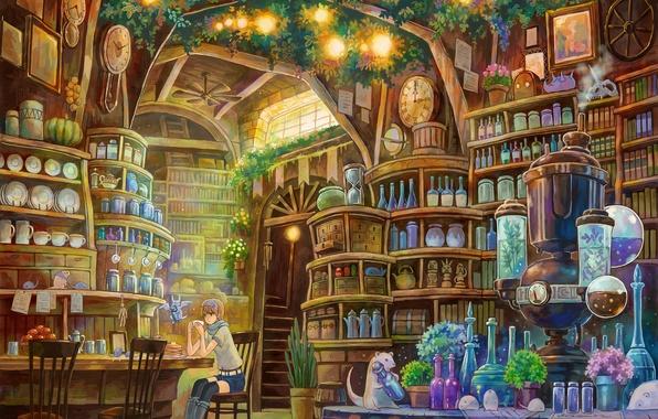 Картинка комната, книги, девочка, бутылки, библиотека, лаборатория, оборудование
