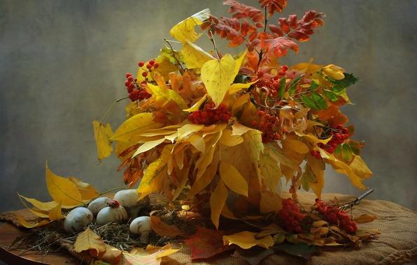 Картинка осень, листья, грибы, букет, натюрморт, рябина, шампиньоны