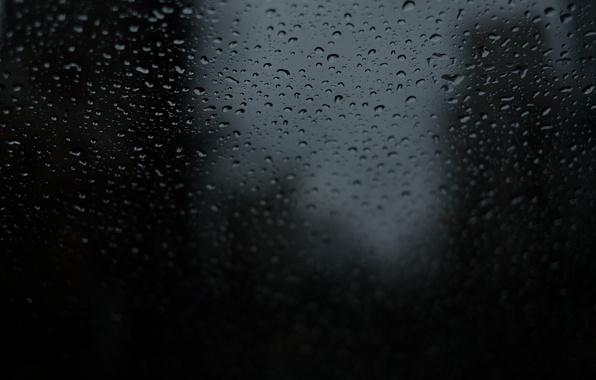 Картинка вода, капли, фон, черный, мокрое