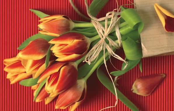 Фото тюльпаны веревка красный букет