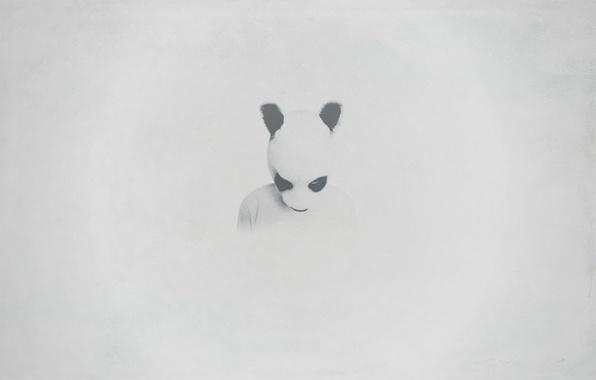Картинка взгляд, пустота, фон, животное, тело, человек, череп, минимализм, текстура, голова, арт, сигарета, панда, белый фон