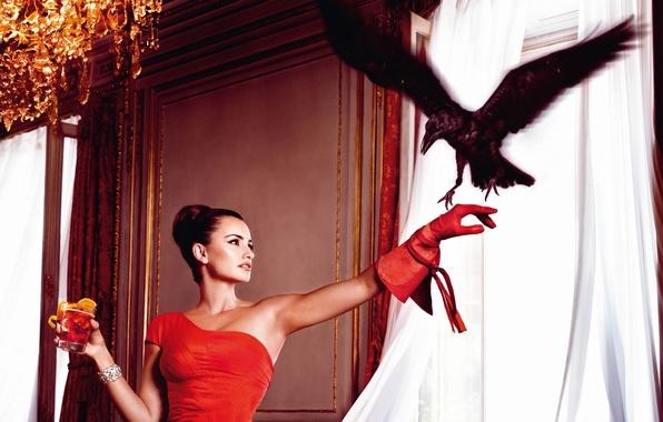 Картинка девушка, фон, актриса, красотка, ворон, Penelope Cruz, Пенелопа Крус