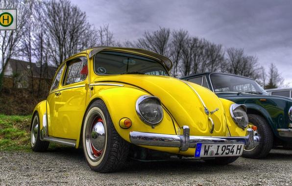 Картинка жук, volkswagen, hdr, vintage, yellow, beetle, car. vw
