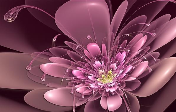 Картинка цветок, розовый, неон, лепестки, арт, усики