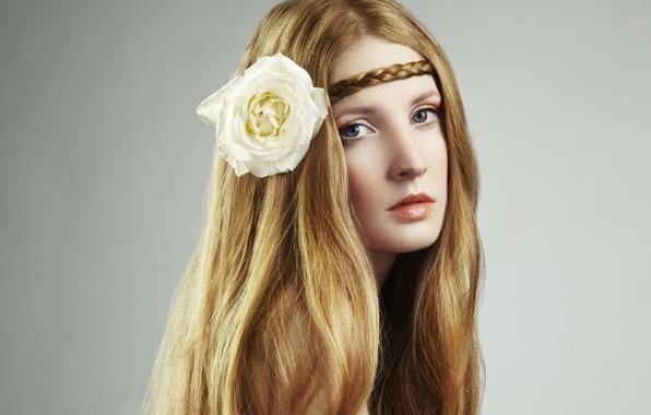Картинка цветок, взгляд, девушка, лицо, длинные волосы, косичка, белая роза