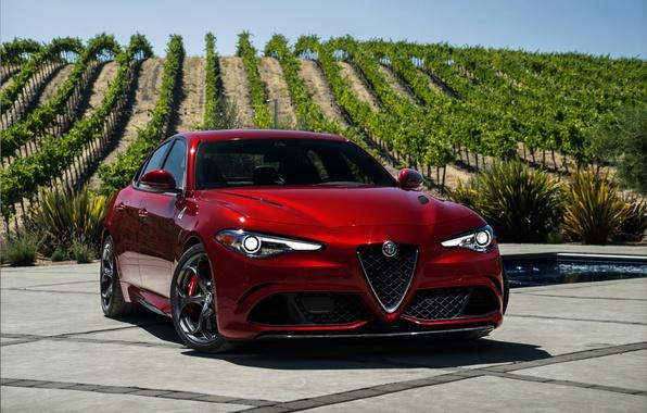 Картинка Alfa Romeo, альфа ромео, Quadrifoglio, Giulia, джулия