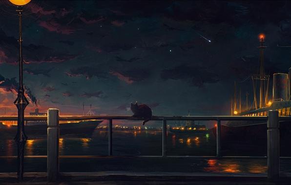 Картинка небо, кот, вода, облака, ночь, огни, река, берег, корабли, арт, набережная