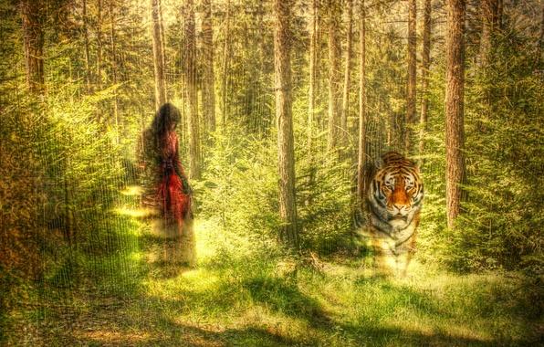Картинка лес, девушка, тигр, стиль, текстура