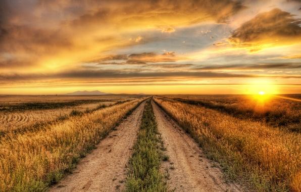 Картинка небо, солнце, облака, пейзаж, природа, фон, widescreen, обои, растение, горизонт, дорожка, wallpaper, тропинка, широкоформатные, background, …