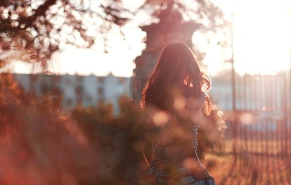 Картинка осень, девушка, блики, волосы, платье, оборот