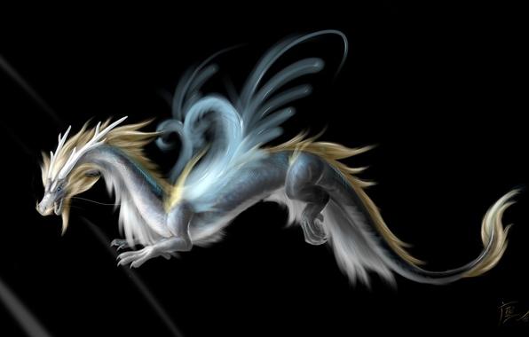 Картинка взгляд, морда, фантастика, дракон, крылья, арт, хвост, рога, черный фон
