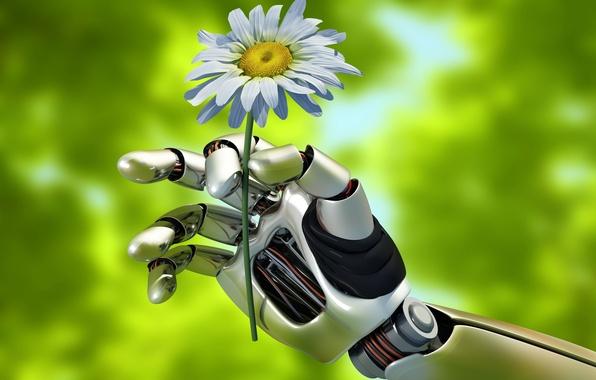 Картинка лето, макро, природа, механизм, робот, рука, размытость, robot, андроид, жест, android, держит, hi-tech, боке, wallpaper., …
