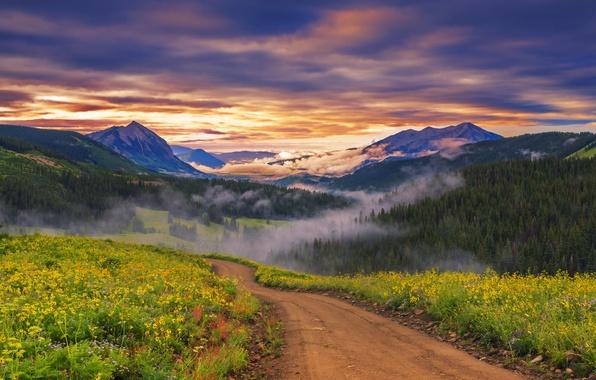 Картинка лес, небо, облака, деревья, закат, цветы, горы, природа, парк, луг, forest, sky, trees, landscape, nature, …
