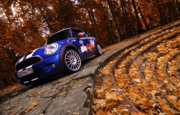 Картинка Осень, Деревья, Листья, Лестница, Mini Cooper