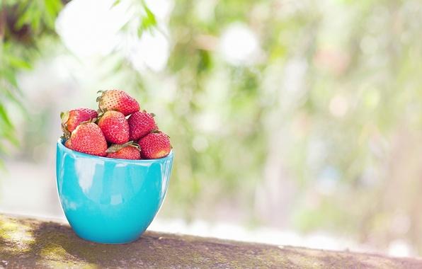 Картинка листья, ягоды, фон, widescreen, обои, еда, размытие, клубника, ягода, кружка, чашка, wallpaper, широкоформатные, голубая, background, …