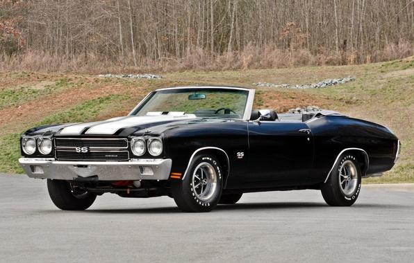 Картинка car, машина, Chevrolet, шевроле, muscle, 1970, 454, Chevelle, Convertible, LS6