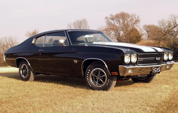 Картинка небо, трава, деревья, чёрный, купе, Chevrolet, Шевроле, Coupe, 1970, передок, Chevelle, Muscle car, Hardtop, Мускул …