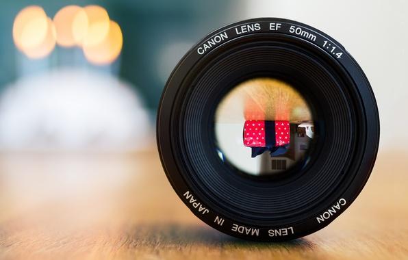 Картинка отражение, комната, подарок, зеркало, объектив, Canon, боке