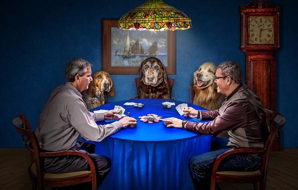 Картинка собаки, карты, игра, часы, фишки, покер, мужчины