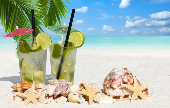 Картинка море, пляж, пальма, лайм, ракушки, морская звезда, beach, sea, lime, shells, starfish, total, palm, котейль