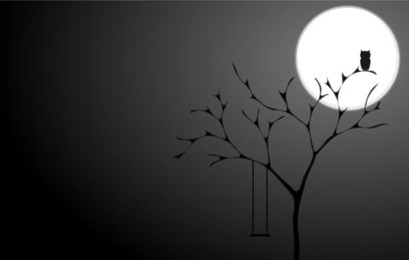 Картинка ночь, фон, дерево, сова, луна, черный, минимализм, Полнолуние