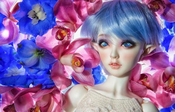 Картинка цветы, эльф, игрушка, кукла, орхидеи