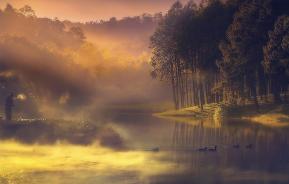 Картинка туман, река, утки, рыбак, утро, дымка