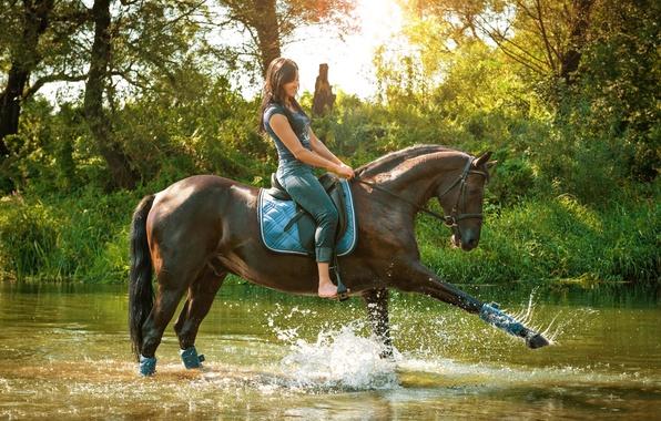 Картинка трава, вода, девушка, солнце, деревья, брызги, природа, конь, лошадь, джинсы, майка, всадница, брюнетка, грация, речка, …