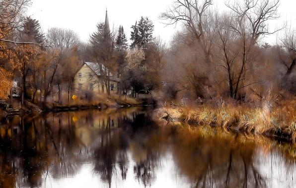 Картинка лес, небо, деревья, озеро, дом, пруд