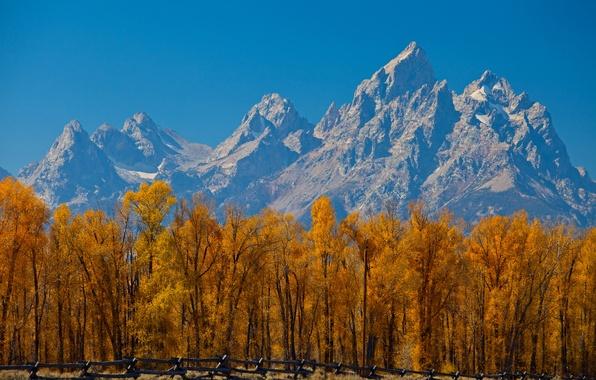 Картинка осень, небо, листья, деревья, горы, забор