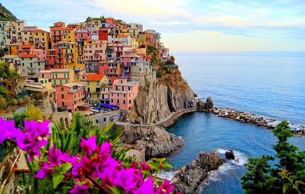 Картинка море, пейзаж, цветы, природа, город, камни, скалы, побережье, дома, лодки, Италия, Italy, Монтероссо-аль-Маре, Monterosso al …