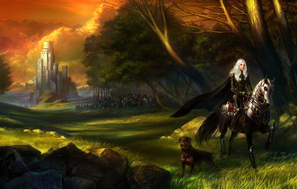 Картинка лес, трава, девушка, камни, замок, конь, собака, армия, всадница, арт
